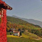 Goldener Oktober in Südtirol - Törggelewanderung inklusive